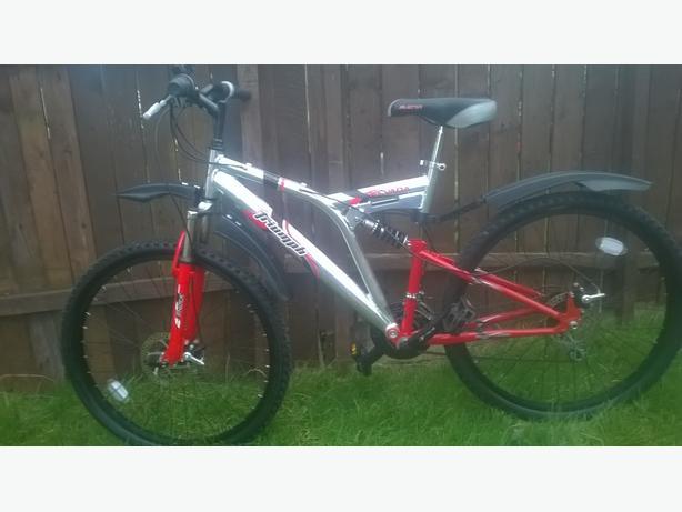 allioy frame triumph mountain bike