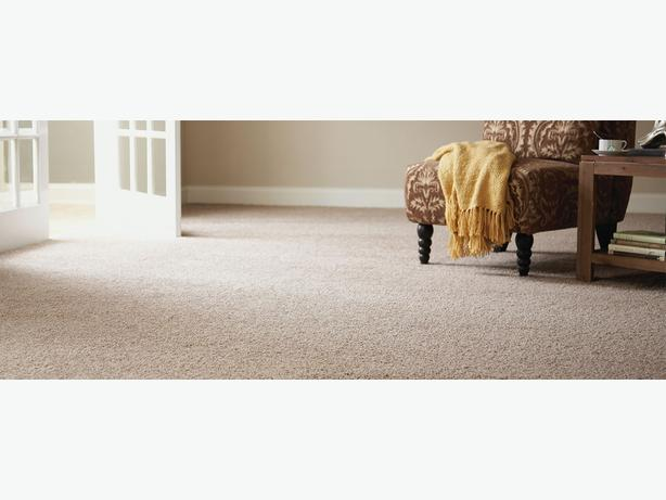 best carpet cleaners and removing stains