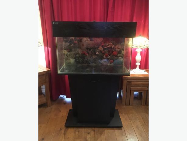 Fish Tank 110 Litres