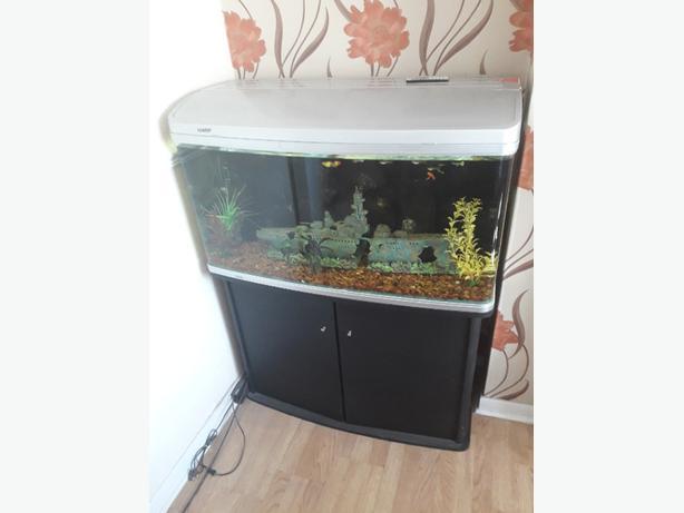 aqua Vista tropical fish tank