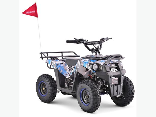 Explorer 36V 1000w 3 Speed Electric Quad Bike ATV