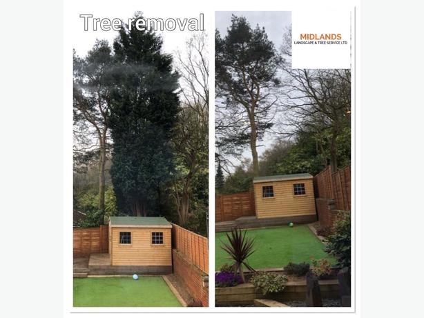 Tree Maintenance ,Fencing, Landscaping services