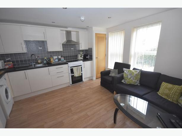 Immaculate furnished pets friendly double bedroom flat to rent