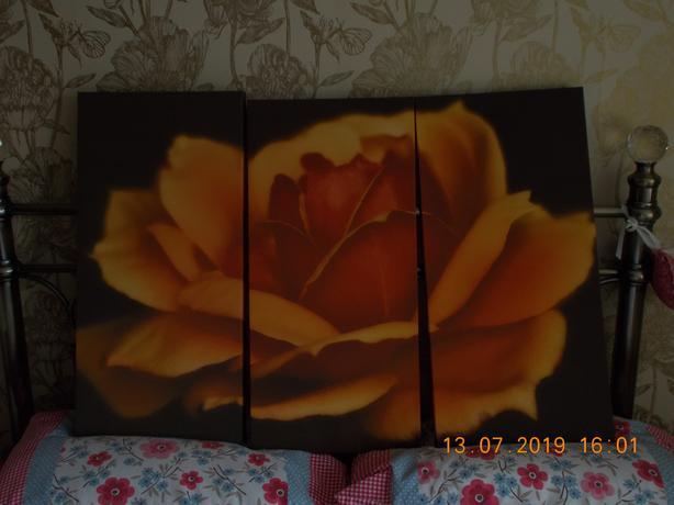 Rose Pattern 3 Panel Print