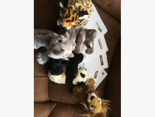 5 NEW WWF SOFT TOY TEDDY BEARS