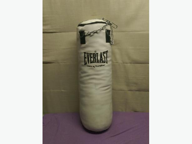 Everlast Punch Bag&Bracket