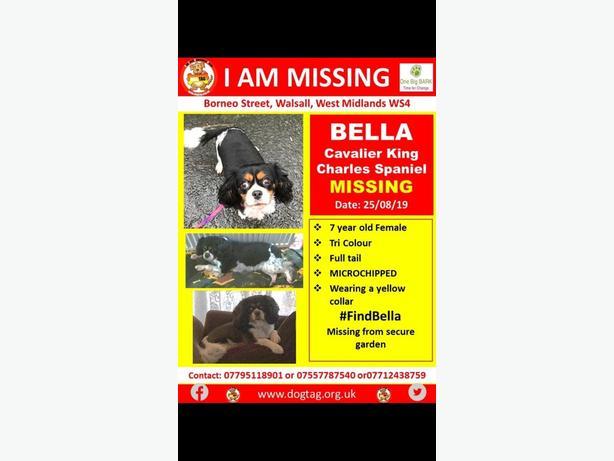 missing/stolen