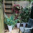 Three fake plants and pots