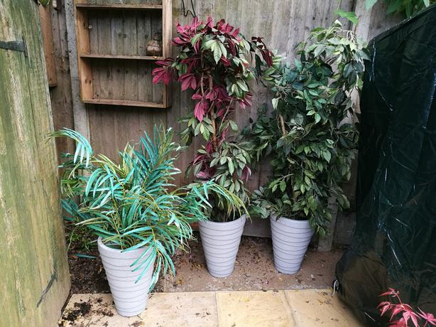 Three fake plants and pots
