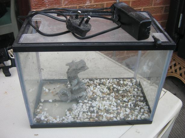 small aquarium (with pomp and decoration)