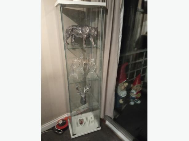 New tall glass display cabinet
