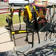 Road Cart & Harness