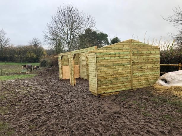 horse stables and shelters