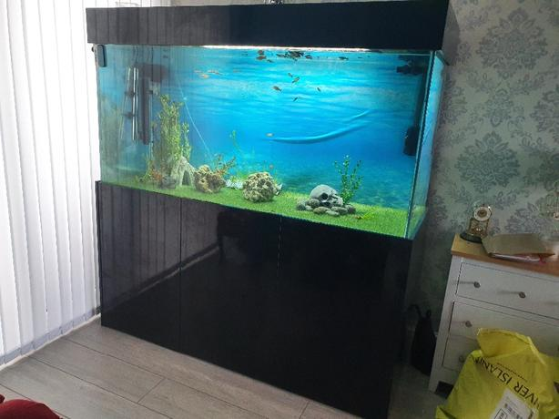 full tropical set up fish tank & cabinet black gloss