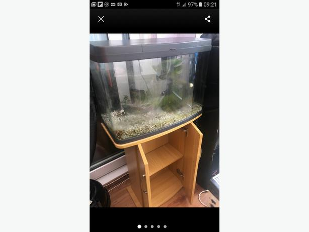 64 litre fish tank and stand