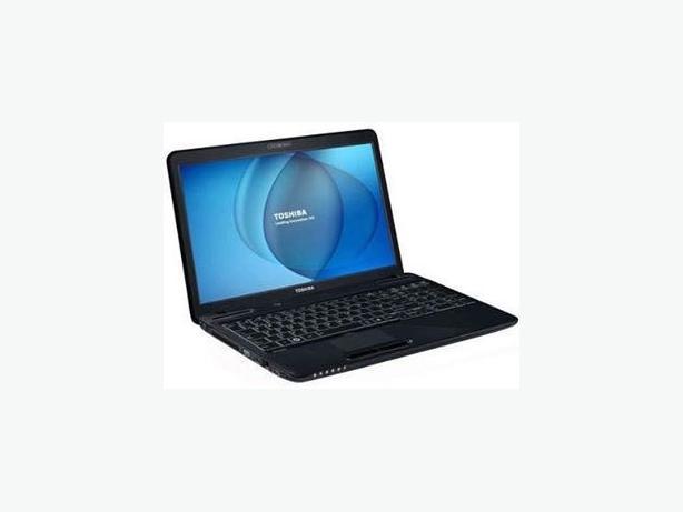 Toshiba Laptop 15.6 HD LED Latest Windows 10 Microsoft Office DVD intel CPU
