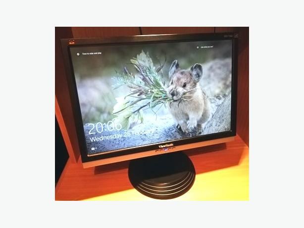 "17"" Viewsonic PC Monitor"