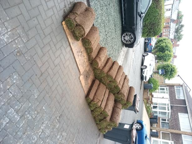 FREE: high quality turf