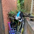 Rubbish removal needed ASAP