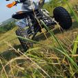 Road legal Quadzilla 450cc  2011