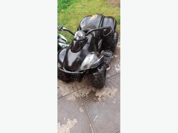 mini quad mini moto