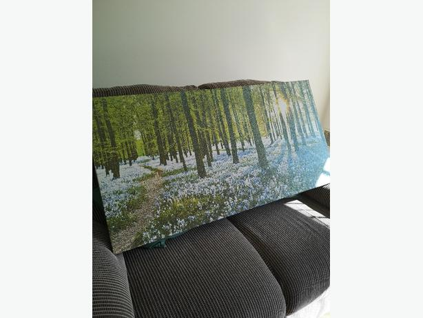 Large picture