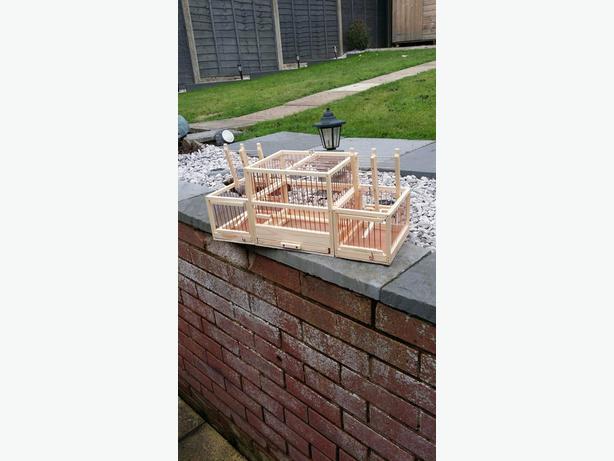 Aviary traps & cage