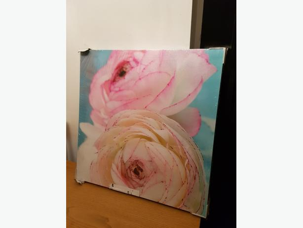 Two x next large canvases -brand new still in wrapping