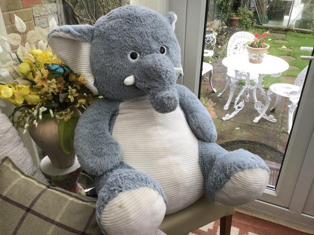 Extra large toy elephant
