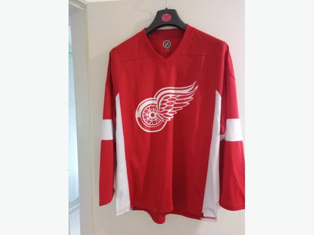 Detroit Red Wings top
