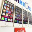 iPhone SE 64GB unlocked Gold - £89.99 Each New