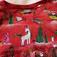 Next Christmas dress age 4-5