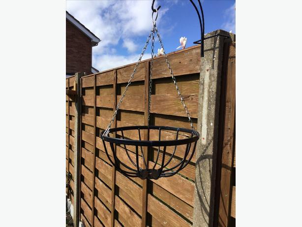 """Hanging basket 12"""""""