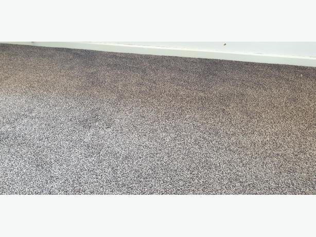 FREE: Brown Carpet.