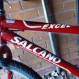 Hawk Cycles Salcano 21 Speed Bike