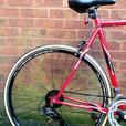 Vicking Race mens bike,14 speed,700c wheels
