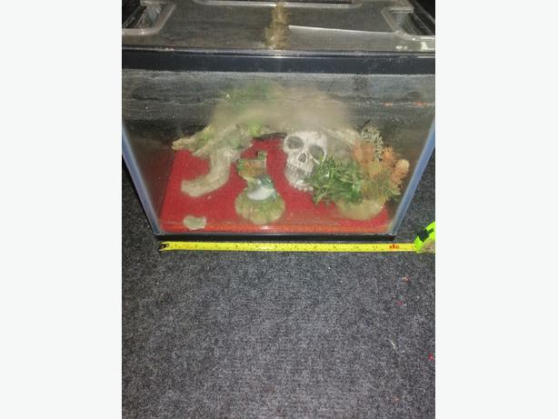 small fish tank with ornaments - £10 - Delivery