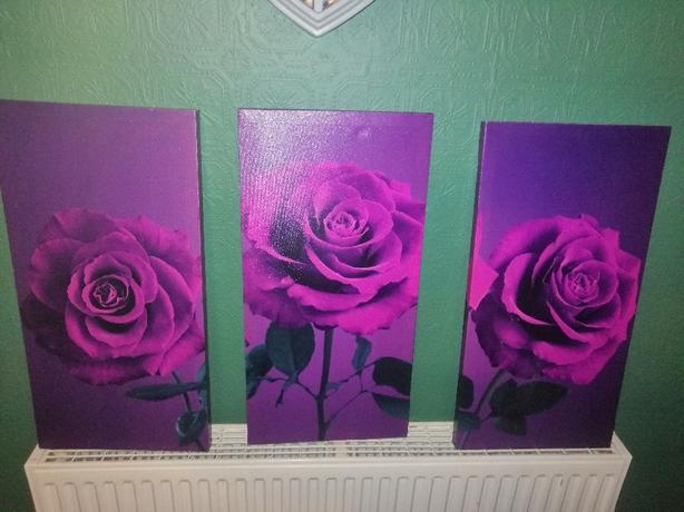 set of 3 canvas prints - purple rose - £6 - delivery -