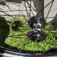 Mountain Bike Wheels x2