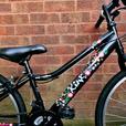 """Apollo Kinx bike,24""""wheels,18 speed"""