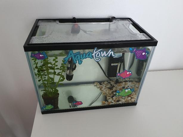 aquarium/ fishtank