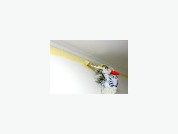 Laminate floor fitter & Painter and decorator