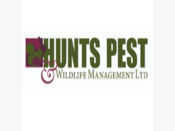 Pest Control Peterborough