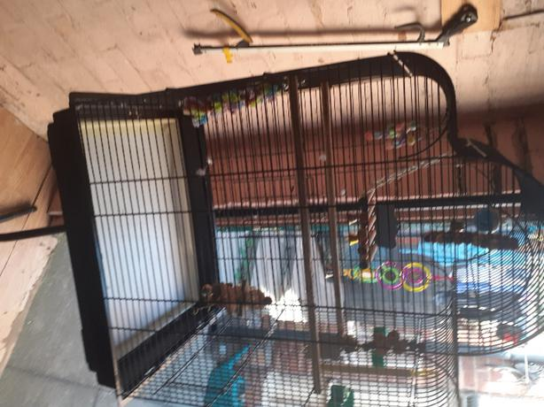 large black bird cage and matching stand