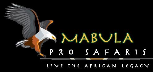 Mabula Pro Safaris logo