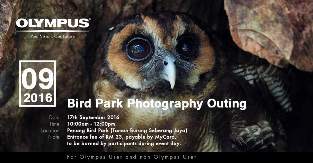 Bird Park Photography Outing 2016