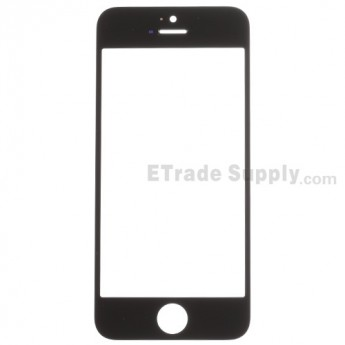 For Apple iPhone 5S Glass Lens Replacement - Black - Grade R