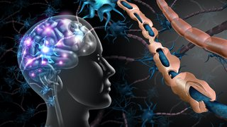 Multiple sclerosis spotlight: Early diagnosis, better treatments, and hope for MS-free future