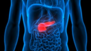 Shaalan Beg, M D : Internal Medicine | Medical Treatment of
