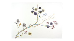 Watercolor flower collage